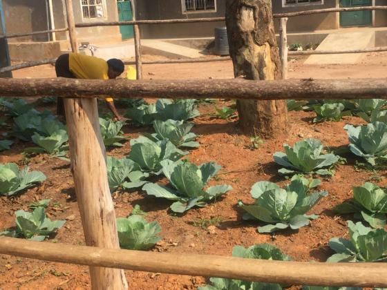 Blog 10 Matron Passy working in one of the school vegetable gardens